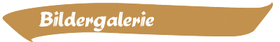 header_galerie